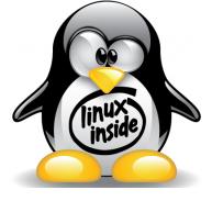 linux-inside-tux_black